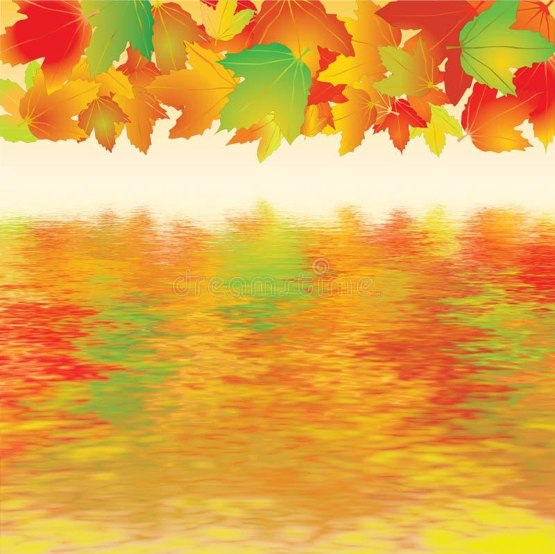 Download Maple leaves stock illustration. Image of illustration - 17608991