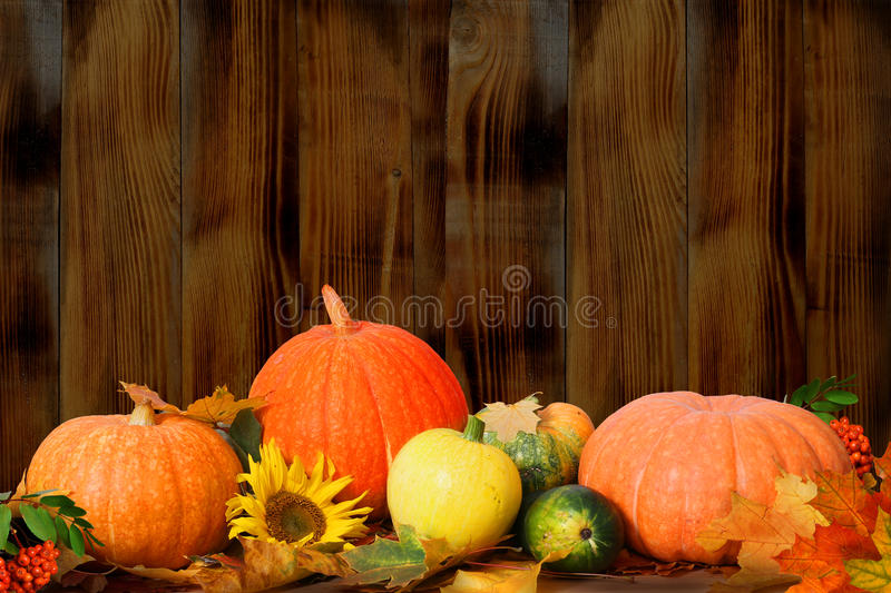 Maple leaves and pumpkins on wooden table royalty free stock photo