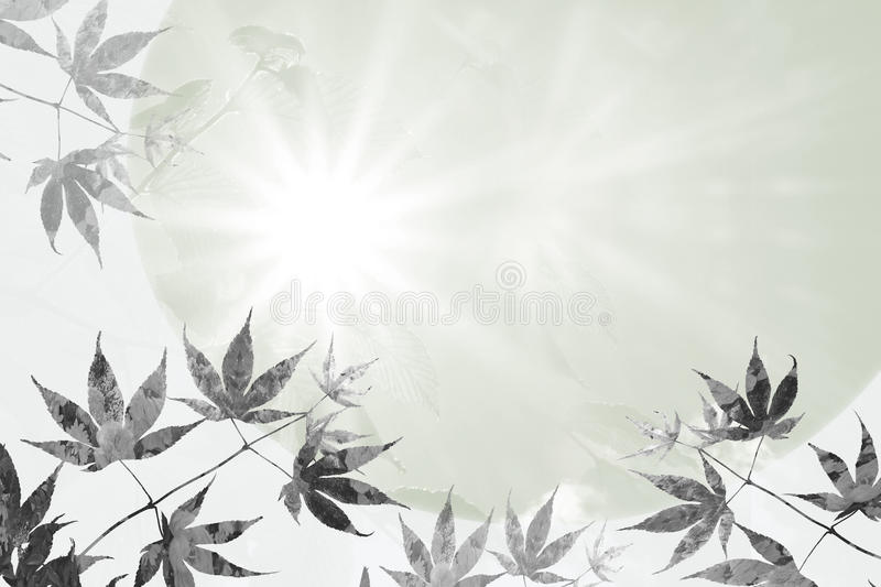Maple leaves and rays of hope, sympathy background design. Branch with maple leaves and rays of hope, sympathy background stock image