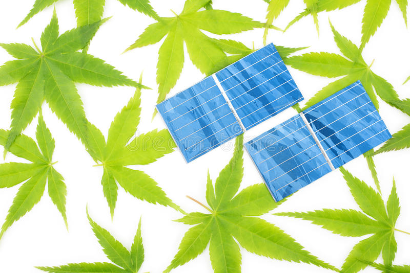 Maple Leaves And Solar Cells Royalty Free Stock Images