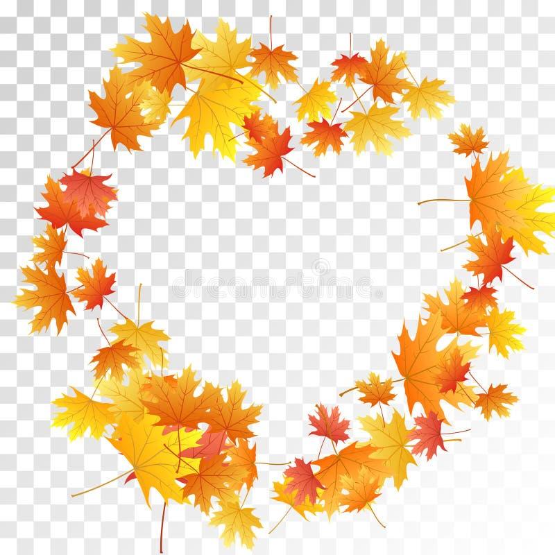 Maple leaves vector illustration, autumn foliage on transparent background stock image