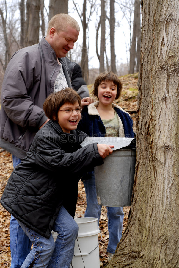Download Maple Sugaring with Dad stock photo. Image of delighted - 2830656