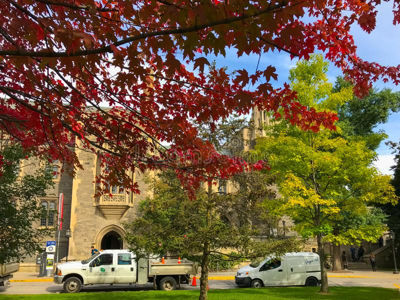 Maple trees shade trinity college building, university of Toronto, Canada. In late autumn, Victoria`s buildings are shaded by flaming maple trees, in sharp royalty free stock image