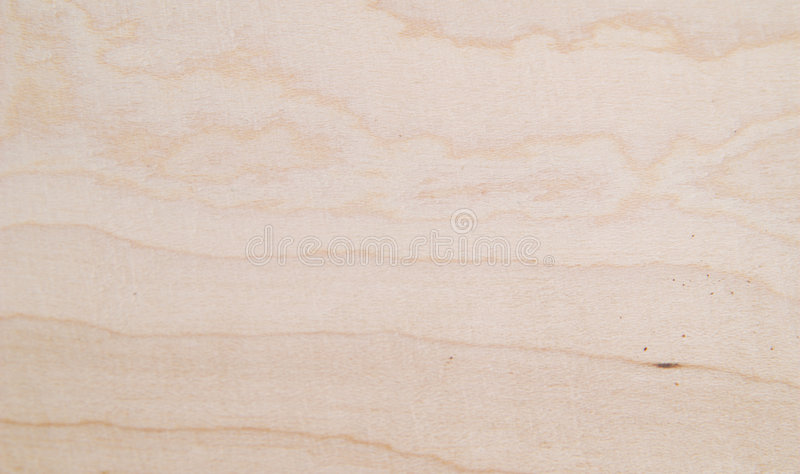 Maple wood texture royalty free stock images