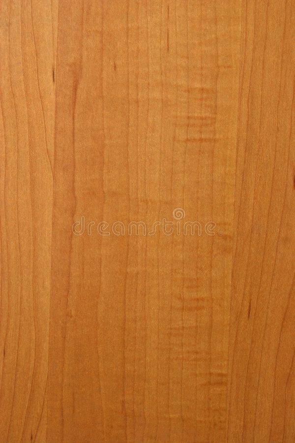 Maple wood texture stock image of parquetry