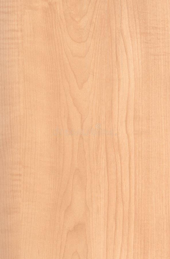 Maple Wood Texture ~ Maple wood grain texture imgkid the image kid