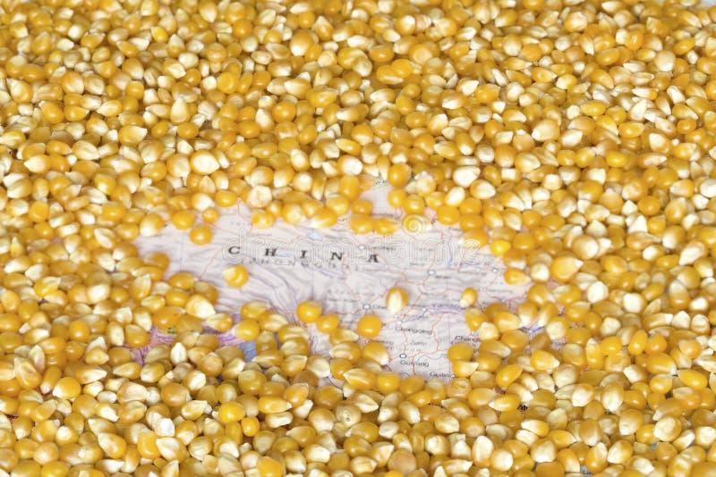 Mappa della Cina nell'ambito di un fondo dei semi del cereale fotografia stock libera da diritti