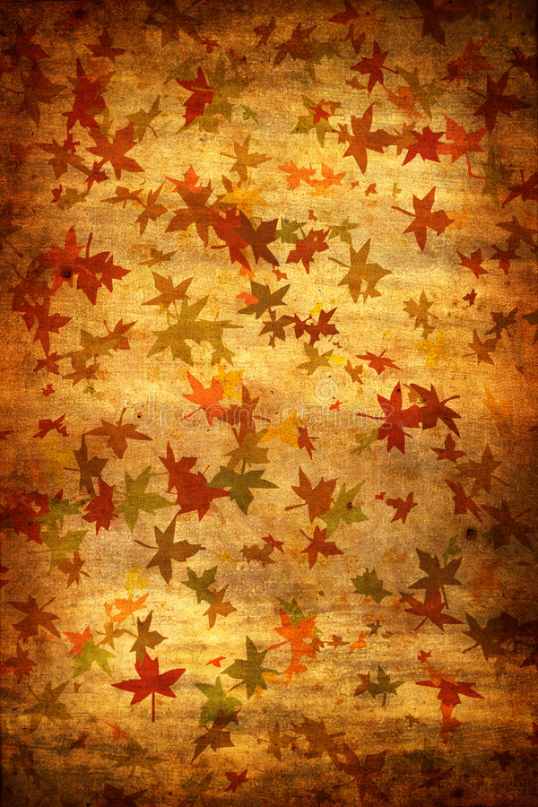 Mapple Leafs Autumn Grunge Background Stock Images
