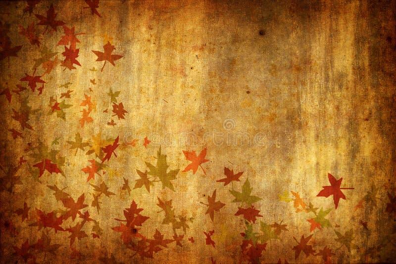 Mapple treibt Herbst grunge Hintergrund Blätter stock abbildung