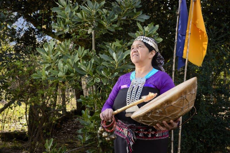 Mapuche traditionellt musikinstrument arkivfoton