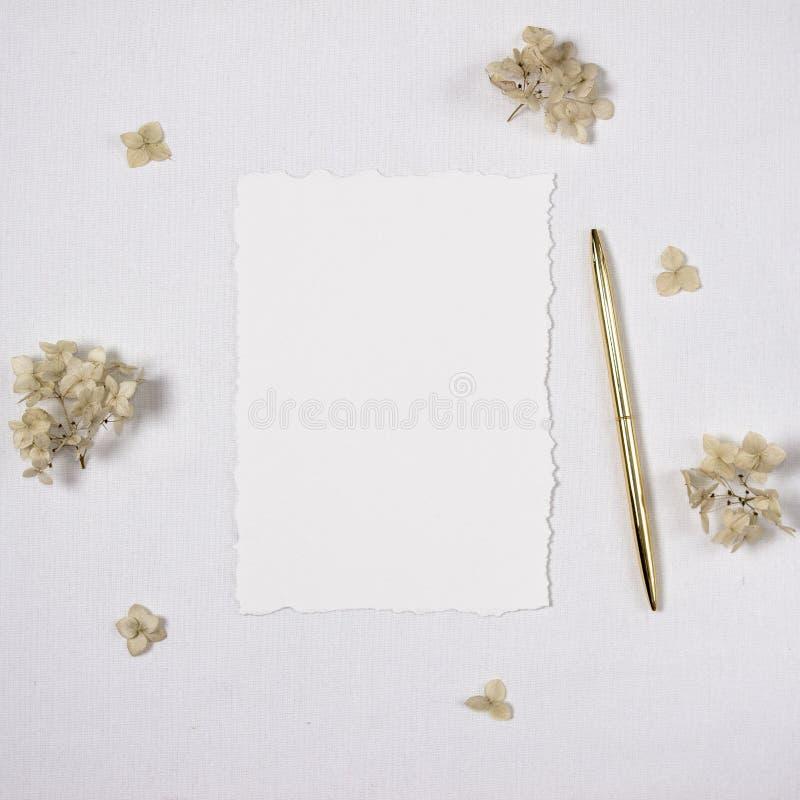 Maqueta de la invitación de la boda, hoja de papel con los bordes torned en una superficie blanca del algodón y una pluma de oro, libre illustration