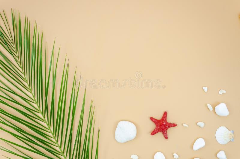 Maqueta de la playa del verano con la hoja de palma, las estrellas de mar y las conchas marinas Bandera puesta plano de la visión fotos de archivo