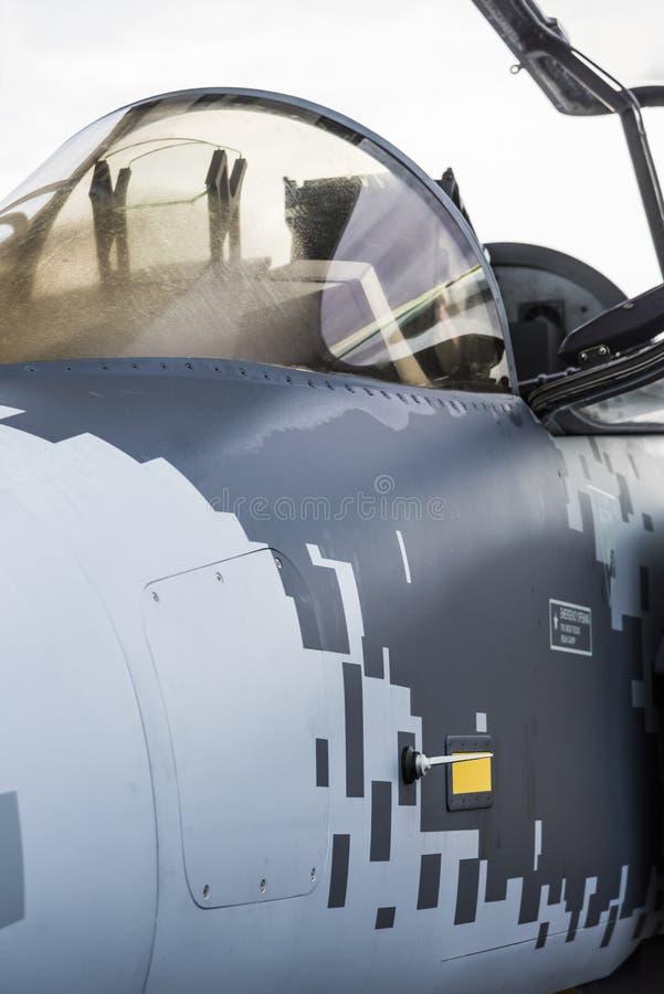 Maqueta de los aviones de combate del NG de SAAB Gripen fotografía de archivo