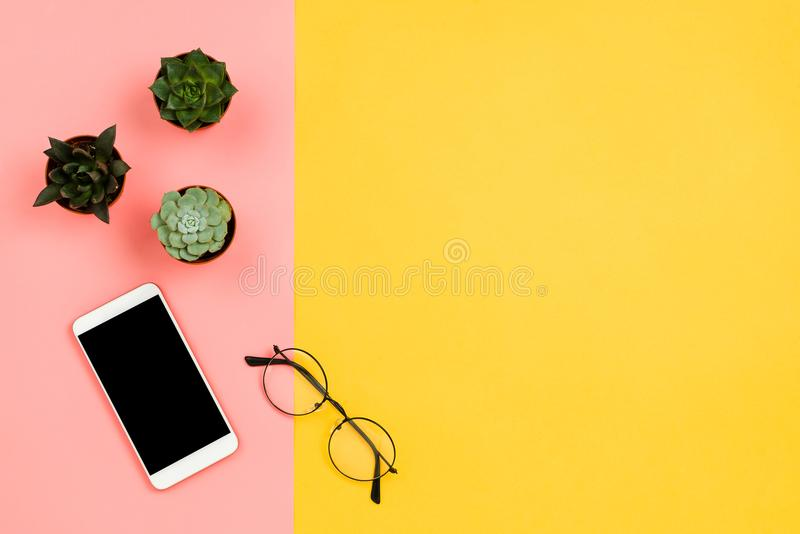 Maqueta del negocio con smartphone con la pantalla negra del copyspace, las flores suculentas y los vidrios foto de archivo