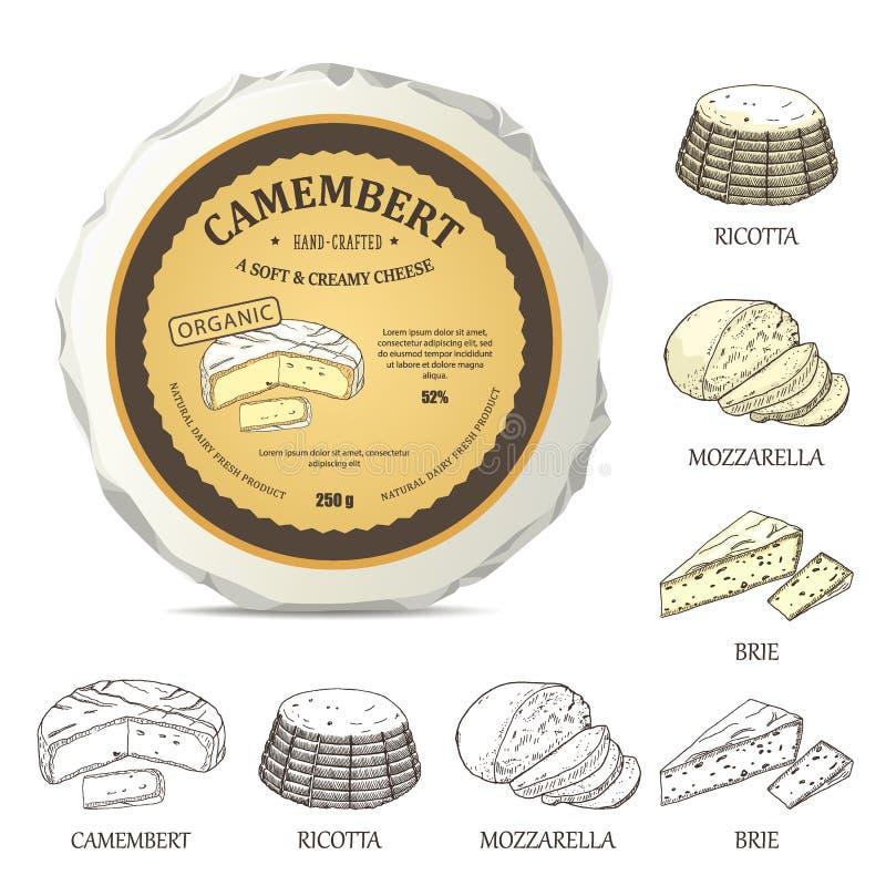 Maqueta del queso redondo con la etiqueta del camembert Ejemplo del vector con la etiqueta engomada del vintage libre illustration
