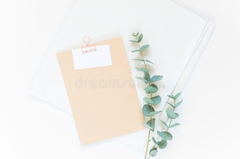 Maqueta elegante del color natural fotografía de archivo libre de regalías