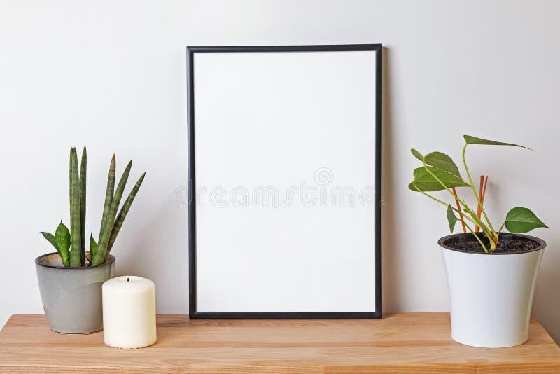 Maqueta en blanco del marco en el estante de madera con las plantas verdes foto de archivo