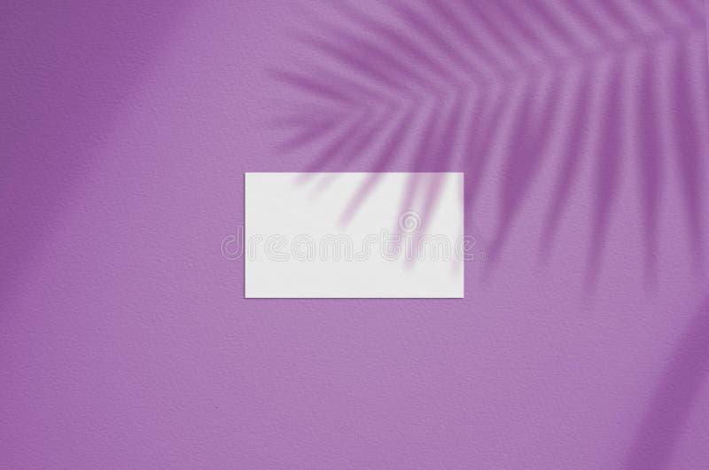 Maquette de carte de visite professionnelle de visite Ombres de allumage recouvertes naturelles les feuilles Cartes de visite pro images stock