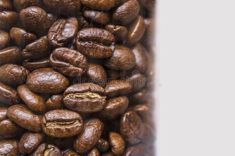 Maquette des grains de café sur le fond blanc d'isolement image stock