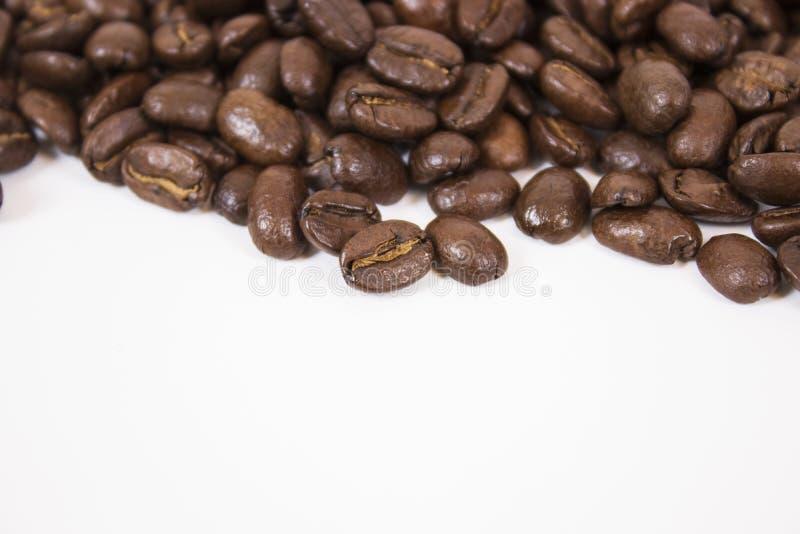 Maquette des grains de café sur le fond blanc d'isolement photographie stock
