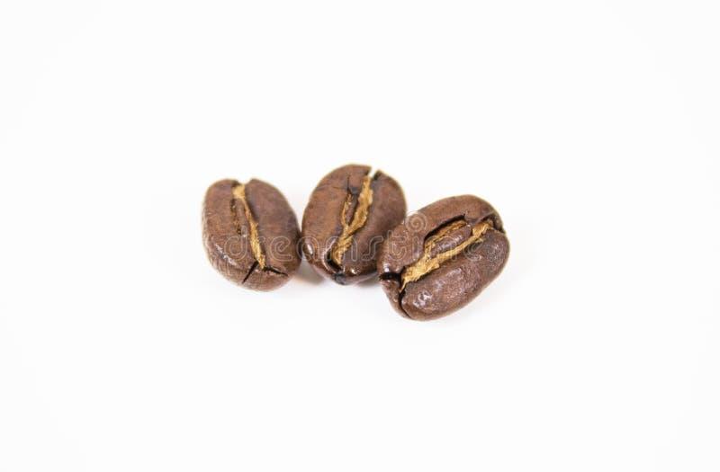 Maquette des grains de café sur le fond blanc d'isolement images libres de droits