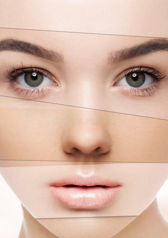 Maquillage différent de tons de belle femme créatif photo stock