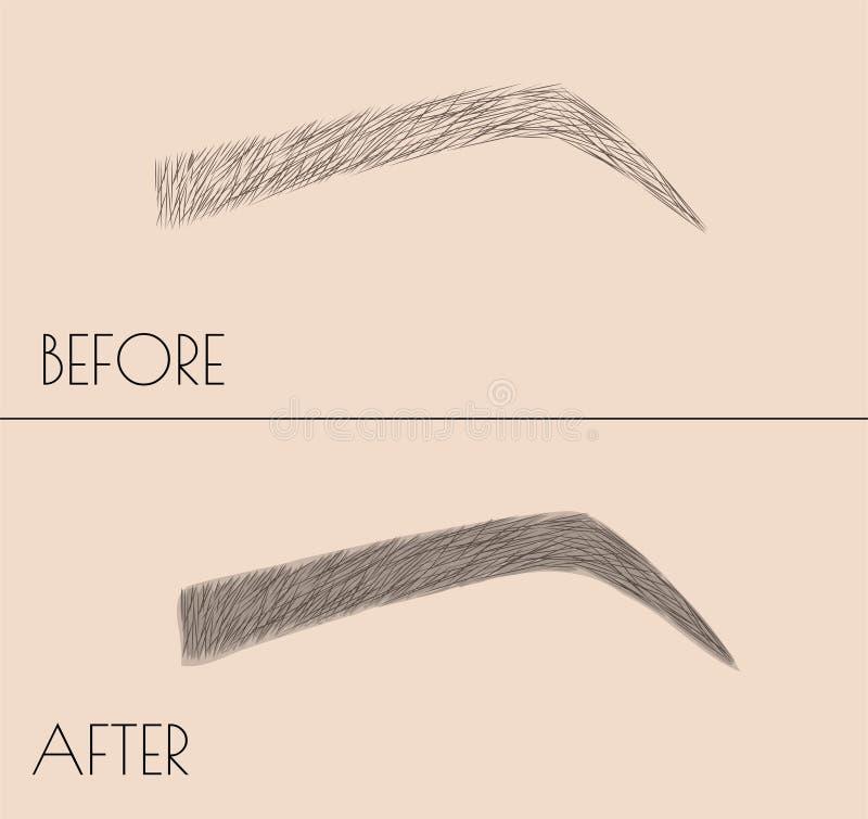 Maquillage permanent Correction de la forme et de la coloration des sourcils Procédure de salon Microblading illustration stock