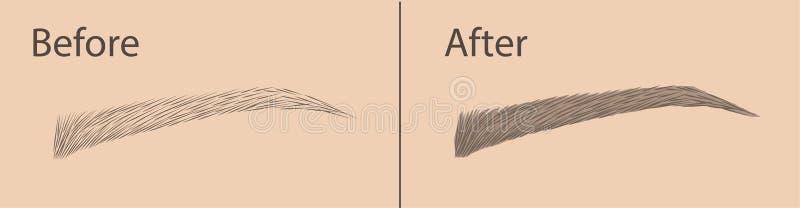 Maquillage permanent Correction de la forme et de la coloration des sourcils Procédure de salon Maquillage Vecteur illustration stock