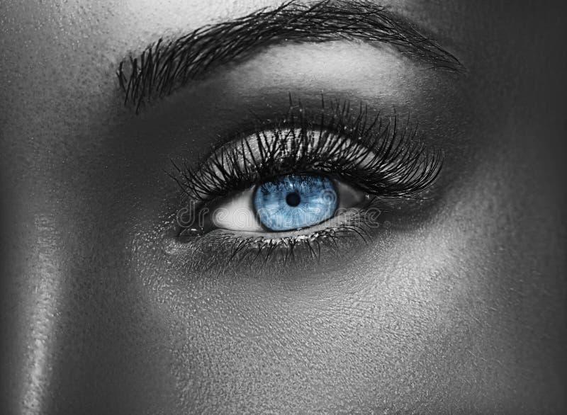 Maquillage professionnel métallique brillant de charme Belle fin d'oeil vers le haut image stock