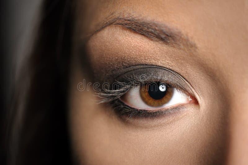 Maquillaje ahumado del ojo de Brown imágenes de archivo libres de regalías