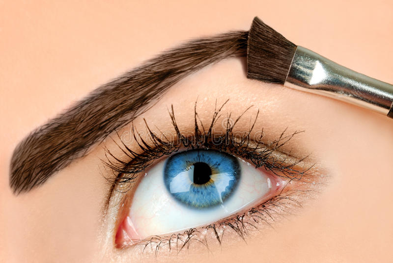 Maquillaje de la ceja imágenes de archivo libres de regalías
