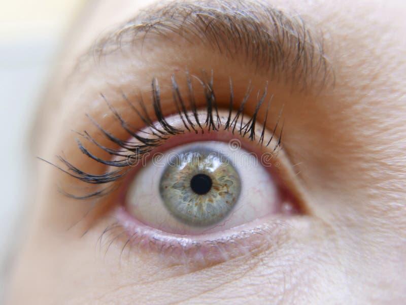 Maquillaje de la muchacha del ojo imágenes de archivo libres de regalías