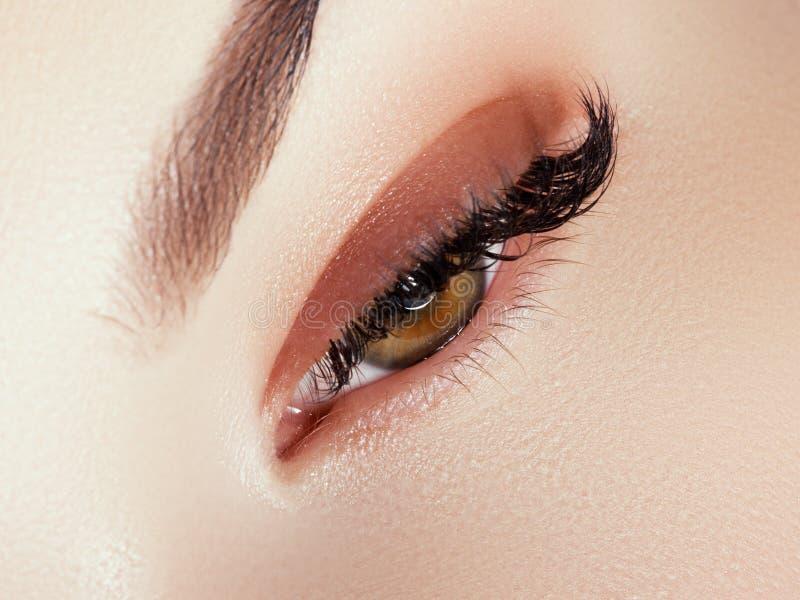 Maquillaje hermoso de la cara Pesta?as naturales largas Primer perfecto del maquillaje Parte de la cara femenina Latigazos y negr fotografía de archivo