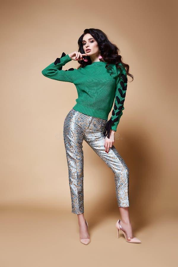 Maquillaje moreno del pelo de la mujer de la moda del modelo hermoso atractivo del encanto imagen de archivo libre de regalías
