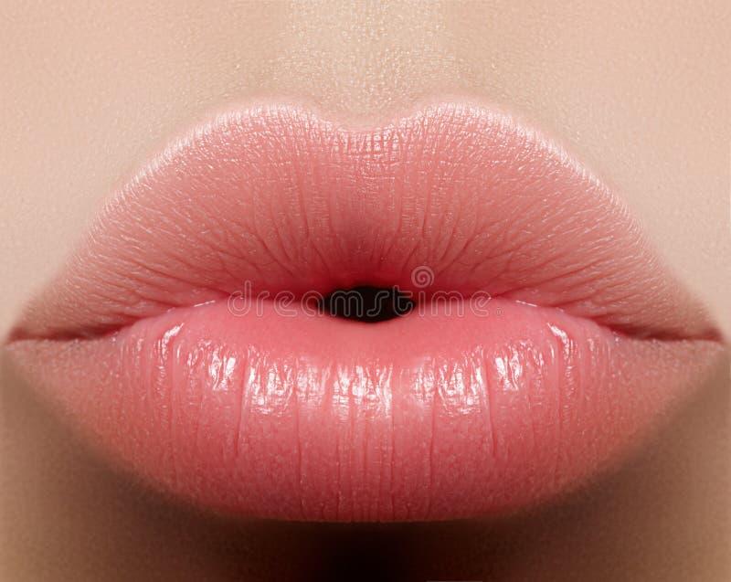 Maquillaje natural del labio del beso del primer Labios llenos regordetes hermosos en cara femenina Limpie la piel, maquillaje fr fotos de archivo