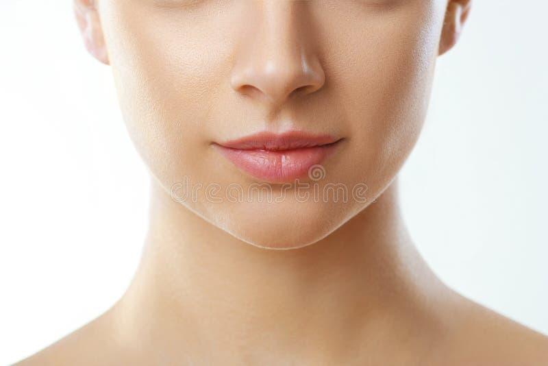 Maquillaje natural perfecto del labio Protecci?n del labio Cierre encima de la boca femenina hermosa Labios llenos regordetes Cui fotografía de archivo