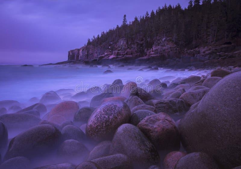 Mar? alta durante o nascer do sol no Acadia imagens de stock