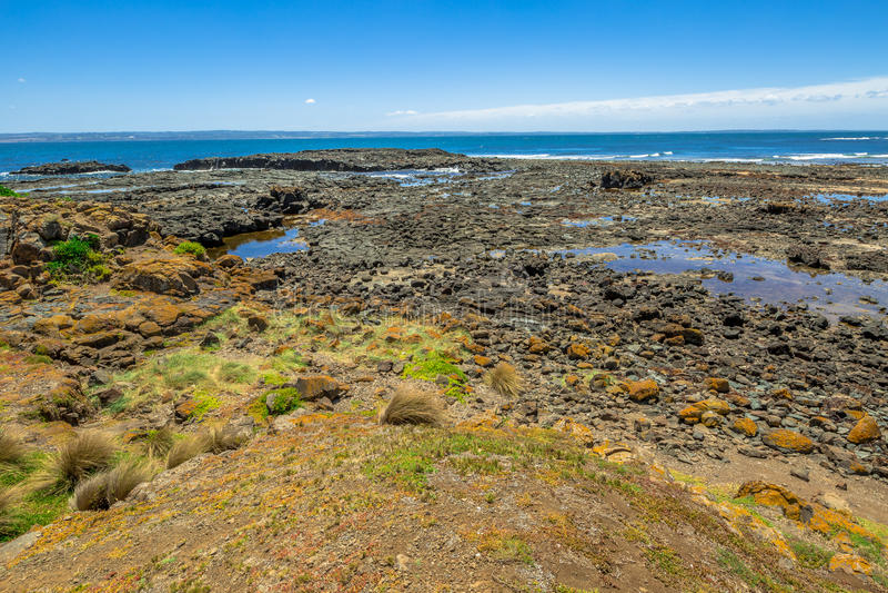 Maré baixa em Phillip Island fotografia de stock royalty free
