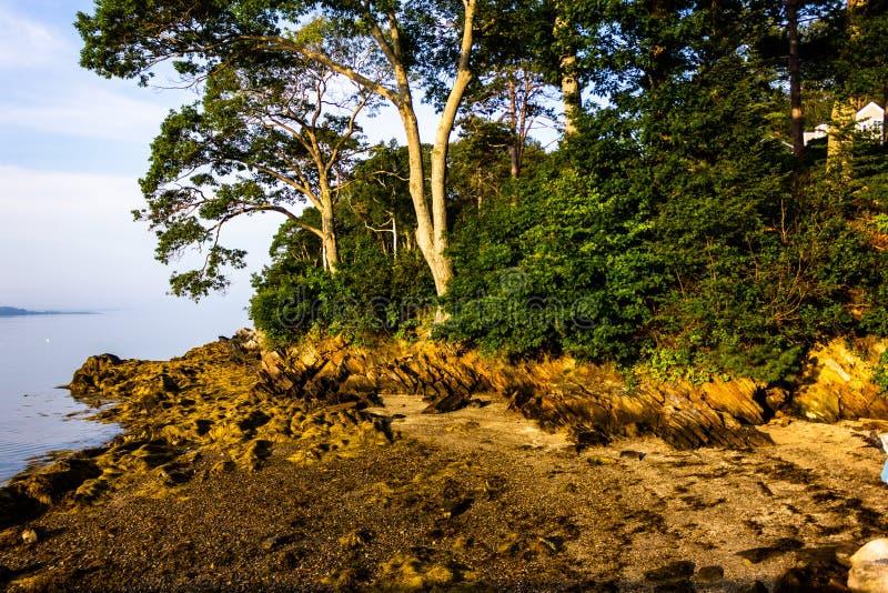 Maré baixa em primos ilha, Maine imagem de stock