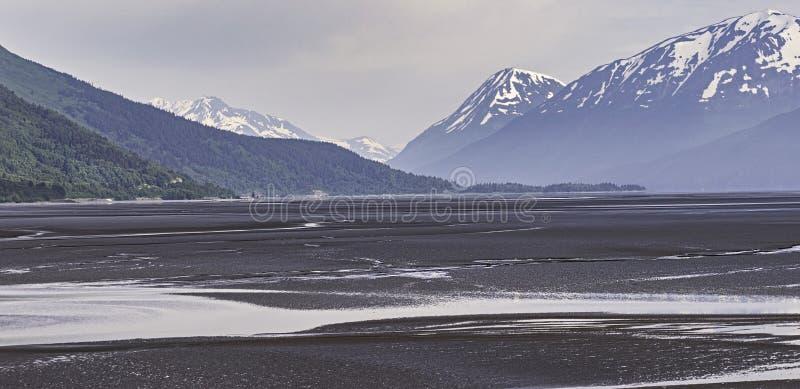 Maré baixa no braço de Turnagain perto de Girdwood em Alaska imagem de stock royalty free