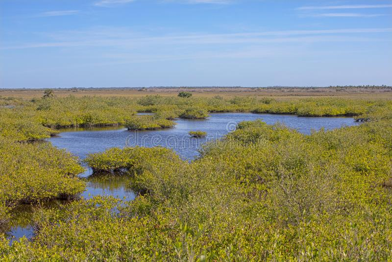 Marécages de Merritt Island National Wildlife Refuge images stock