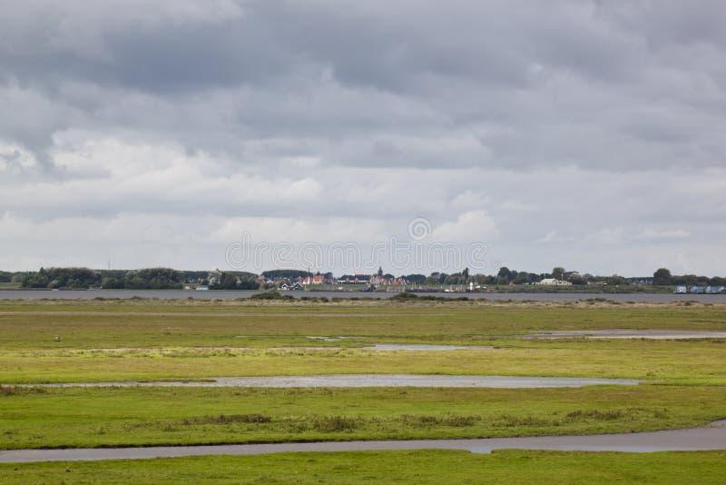 Marécages de parc national Lauwersmeer, Hollande images libres de droits