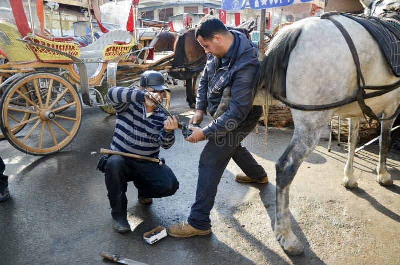 maréchal-ferrant Le sabot du cheval clouant sur des chaussures photographie stock libre de droits