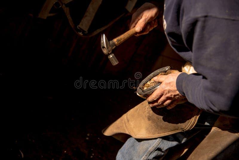 Maréchal-ferrant Shoeing un cheval image libre de droits