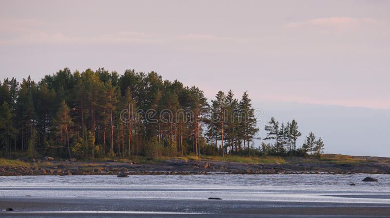 Marée basse à la côte de la mer blanche, Russie Paysage russe du nord grave avec Sandy Beach abandonné, Ridge Of Rocks And A photos libres de droits