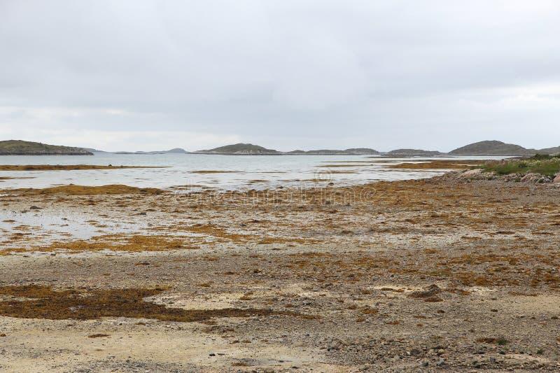 Marée basse de la Norvège photo stock