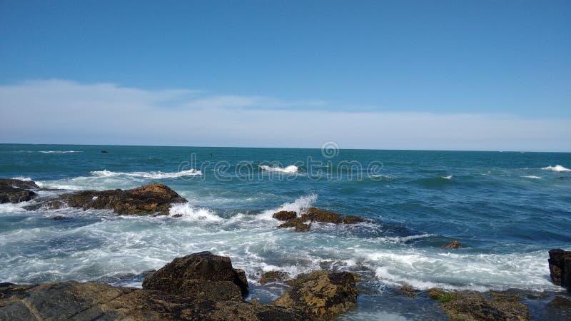 mar. стоковое изображение rf