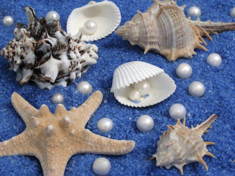 Download Mar imagen de archivo. Imagen de cubo, piedra, shape, zambullida - 7150793