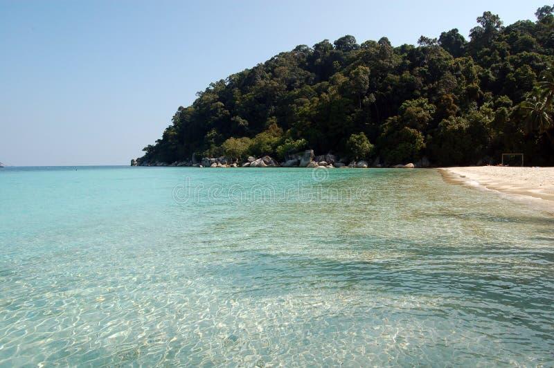 Mar azul tropical com palmas e areia foto de stock royalty free