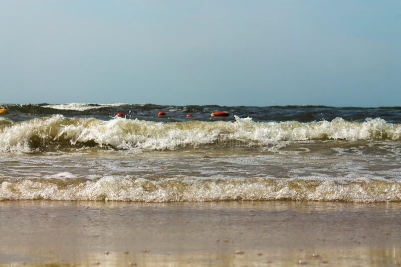 Mar Báltico de praia arenosa Sunset de praia Ondas na praia arenosa fotografia de stock royalty free